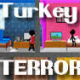 Causality: Turkey Terror